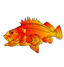 Alaska Wild and Free Rockfish Sticker