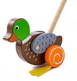 Big Jigs Duck Push Along