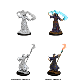 Male Human Sorcerer (90052)