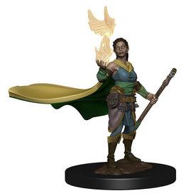 Elf Female Druid (D&D Premium Figure)
