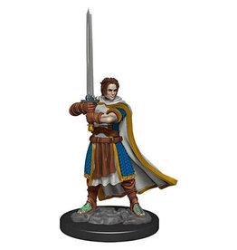 D&D Premium Figure: Male Human Cleric