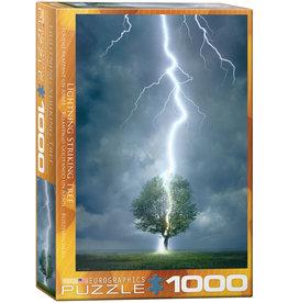 Lightning Striking Tree
