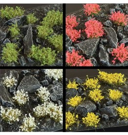 Shrubs and Flowers -