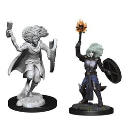 Changeling Cleric (90237)