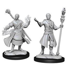 Half-Elf Wizard - Male (90229)