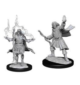 Elf Sorcerer - Male (90262)