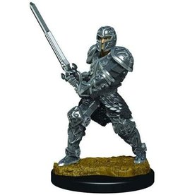 D&D Premium Figure: Male Human Fighter