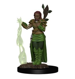 D&D Premium Figure: Female Human Druid