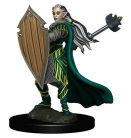 D&D Premium Figure: Female Elf Paladin