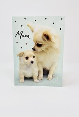 Design Design Mom and baby Chihuahua