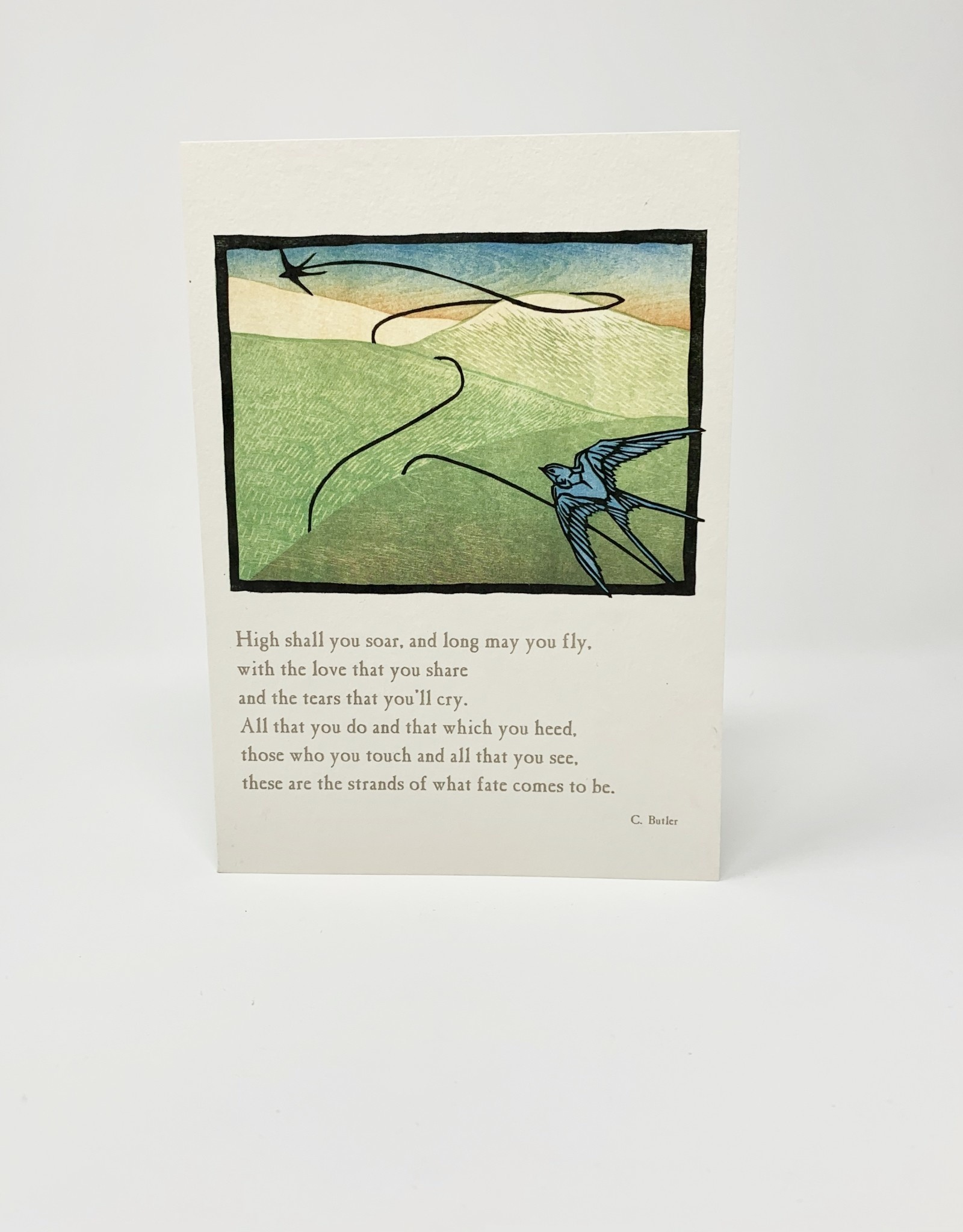 Artist to Watch Swallows