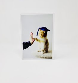 Palm Press Cat Grad