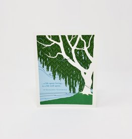 Compendium Tree next to water