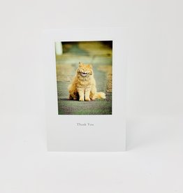 Cardthartic Smiling Cat