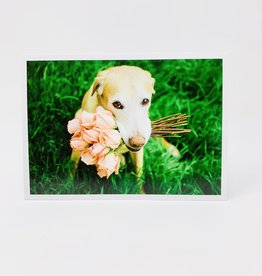 Palm Press Dog w/ Roses