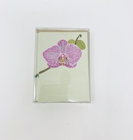 Favorite Story Orchid Enclosure boxed