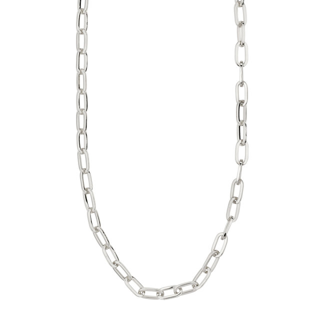 Pilgrim Bibi Chain Necklace