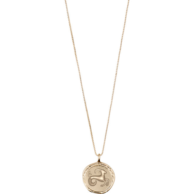 Pilgrim Horoscope Necklace Capricorn