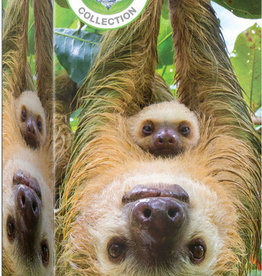 Eurographics Inc Sloths 250 pc puzzle