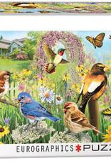 Eurographics Inc Backyard Birds 1000pc Panoramic Puzzle