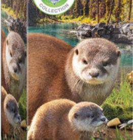 Eurographics Inc Otters 250pc puzzle