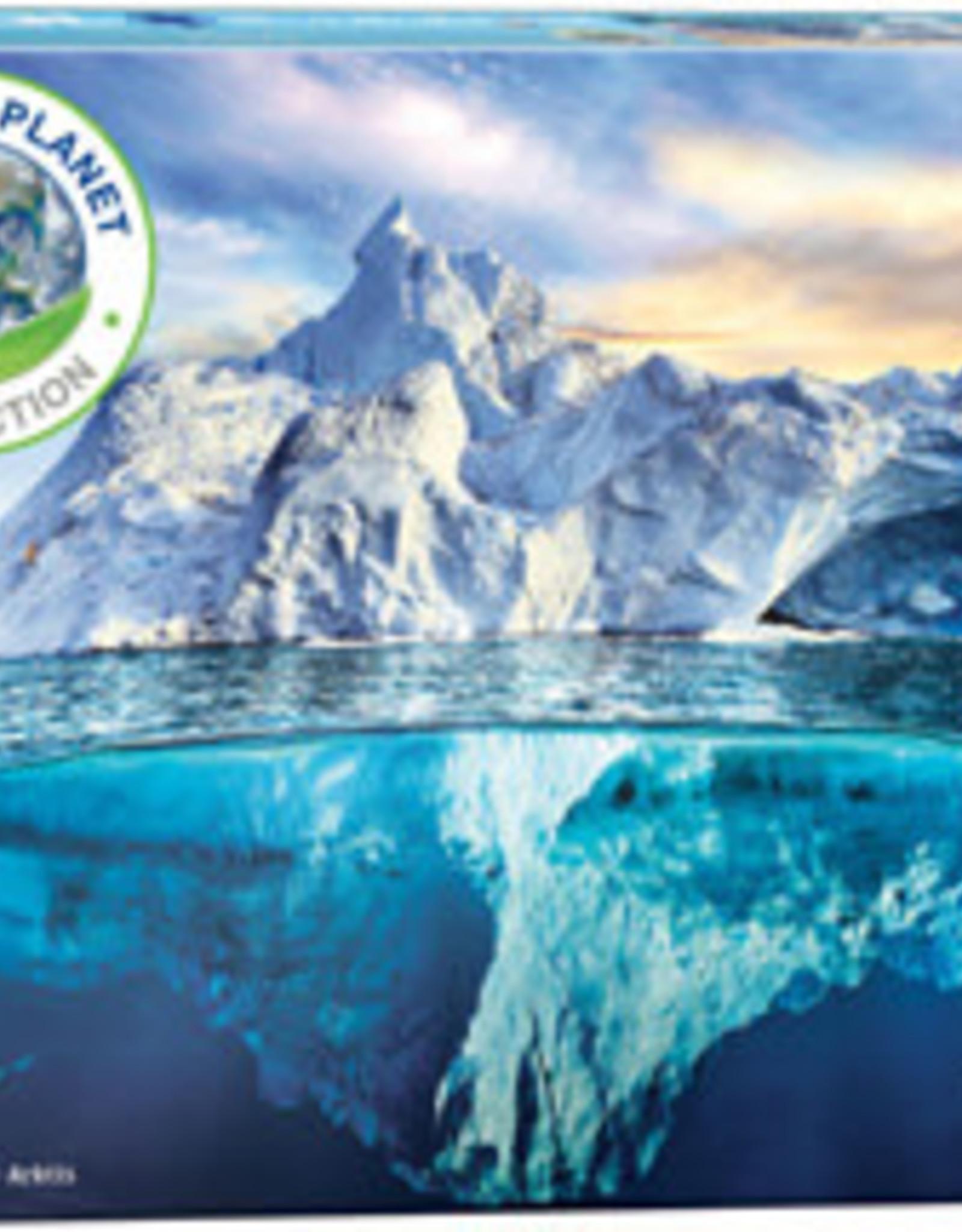 Eurographics Inc Arctic 1000pc puzzle