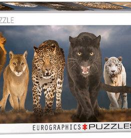 Eurographics Inc Big Cats 1000pc Panoramic Puzzle