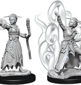 Wiz-Kids D&D Minis: Female Human Warlock