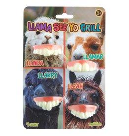 Toysmith Llama See Yo Grill -  Joke Teeth