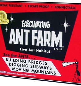 Schylling Uncle Milton Retro Ant Farm