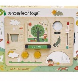 Tender Leaf Toys Weather Watch