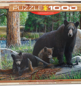 Eurographics Inc New Discoveries 1000pc Puzzle