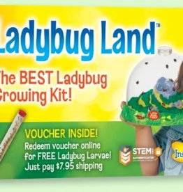 Insect Lore Lady Bug Land