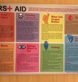 Painless Learning Products First Aid Learning Mat