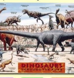 Painless Learning Products Dinosaurs Learning Mat