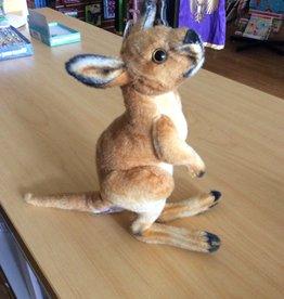 "Real Planet Kangaroo 11"""