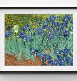Winnie's Picks Irises Paint by Number