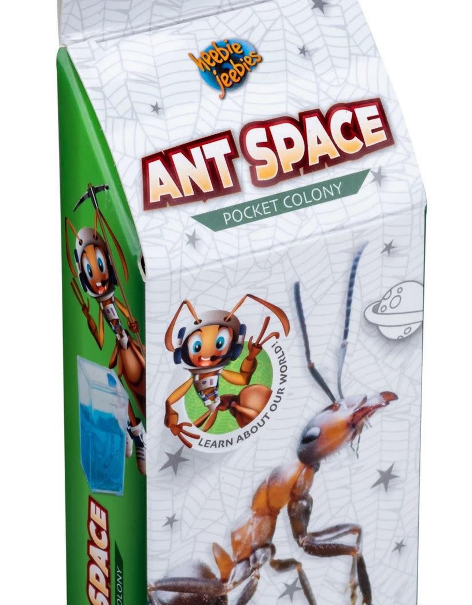heebies jeebies Ant Space Pocket Colony