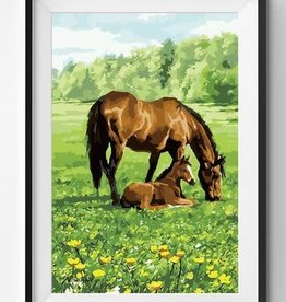 Winnie's Picks Horse and Foal Paint by Number