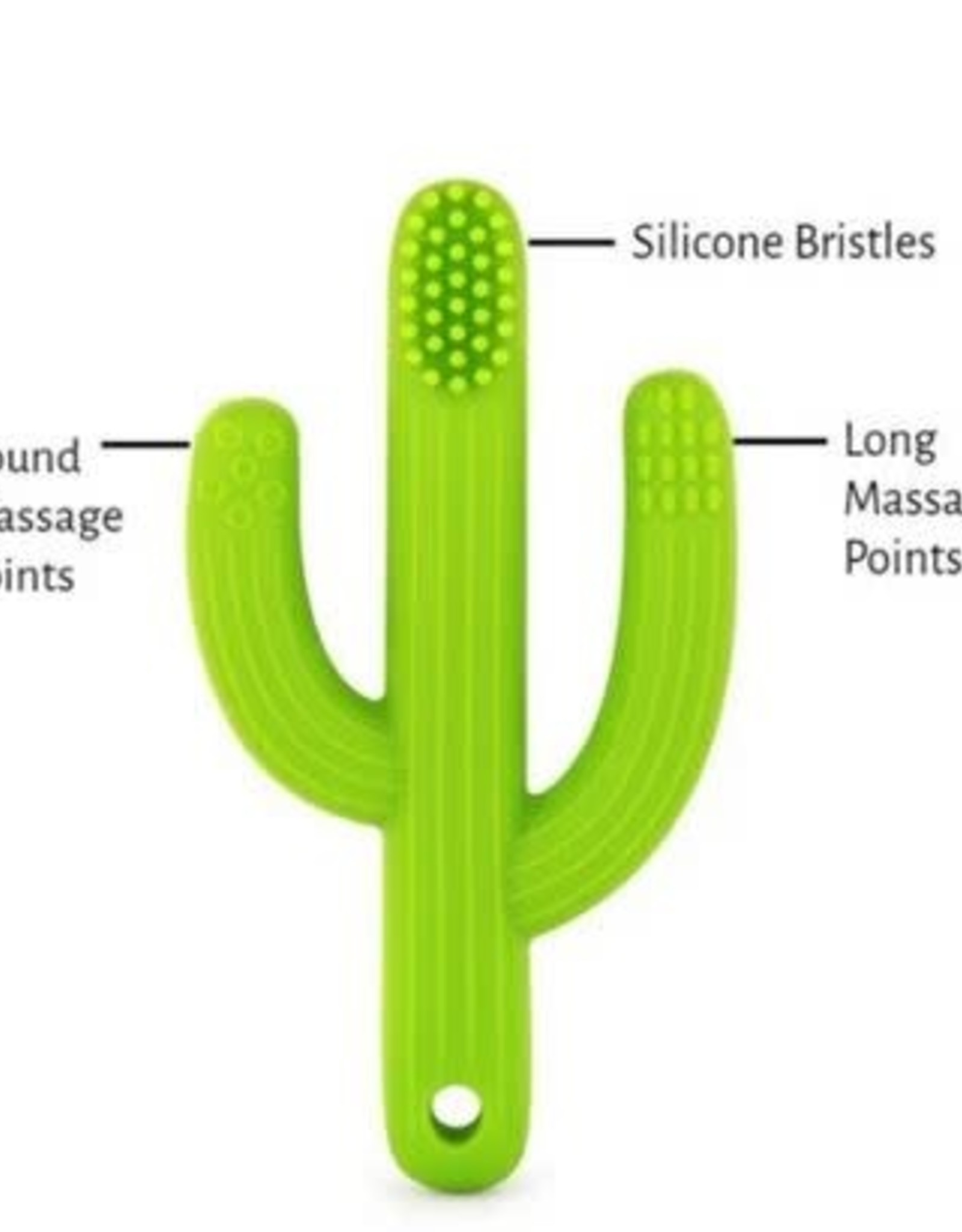 The Pencil Grip Cactus Training Toothbrush