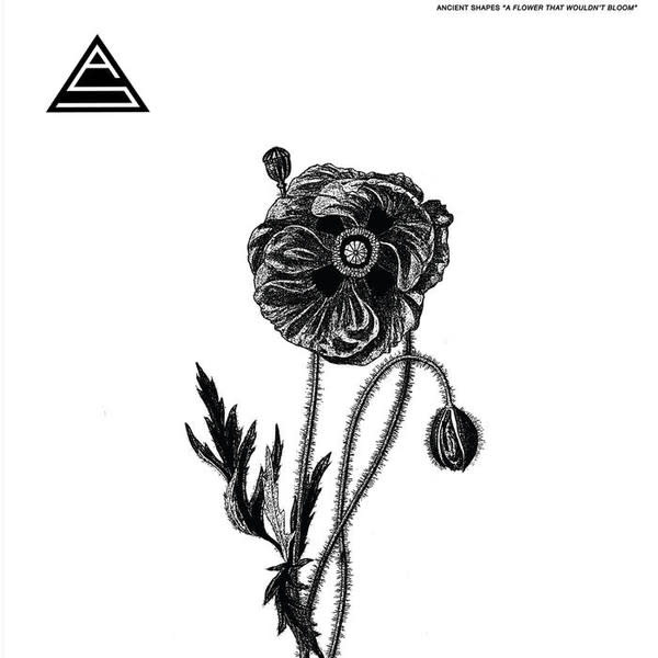 Rock/Pop Ancient Shapes - A Flower That Wouldn't Bloom
