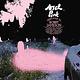 Rock/Pop Ariel Pink - Dedicated To Bobby Jameson