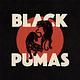 R&B/Soul/Funk Black Pumas - S/T