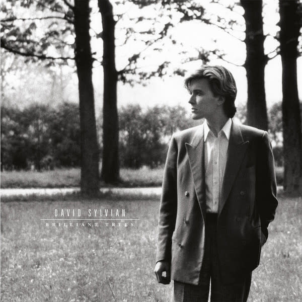 Rock/Pop David Sylvian - Brilliant Trees
