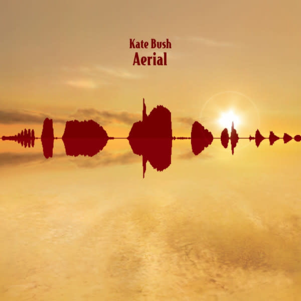 Rock/Pop Kate Bush - Aerial