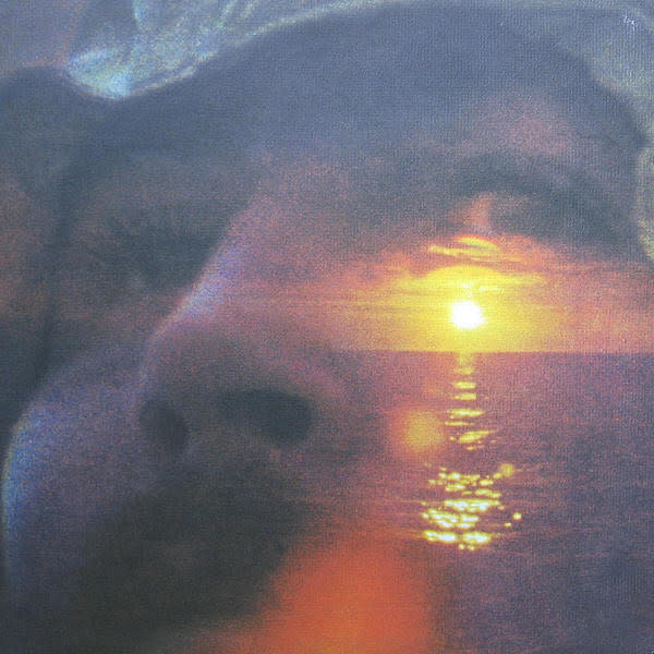Rock/Pop David Crosby - If I Could Only Remember My Name (70s Reissue) (VG+)