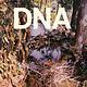 Rock/Pop DNA - A Taste Of DNA (Original 1981 US Press) (VG+)