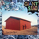 Rock/Pop Giant Sand - Long Stem Rant (Original '89) (VG+)