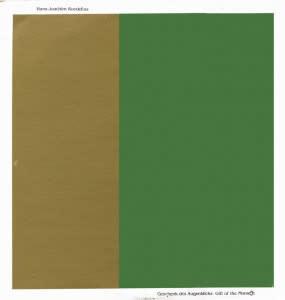 Krautrock Hans-Joachim Roedelius - Geschenk Des Augenblicks - Gift Of The Moment (1984 CA Press) (VG+)