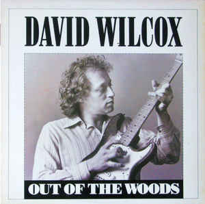 Rock/Pop David Wilcox - Out Of the Woods (VG)